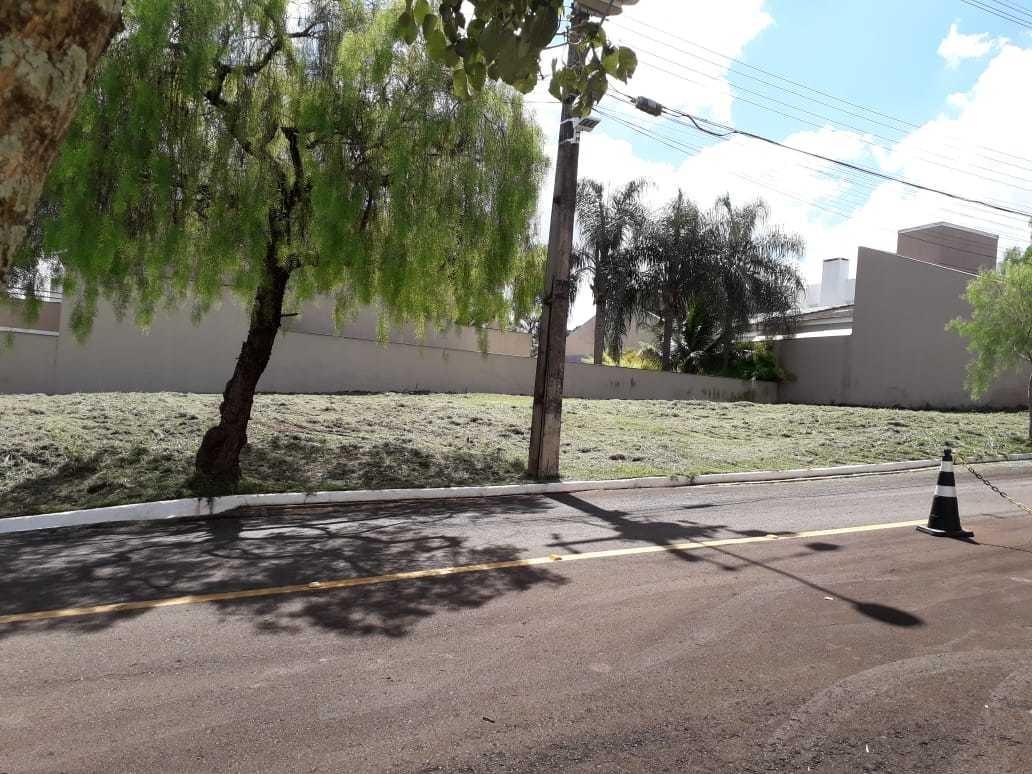 terreno padrão em londrina - pr - te0667_arbo