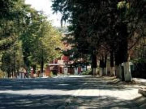 terreno para 5 casas en condado de sayavedra