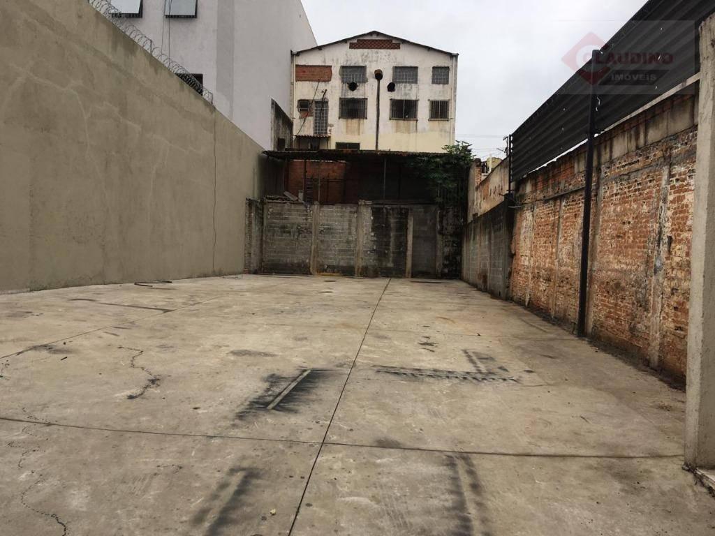 terreno para alugar, 300 m² por r$ 2.800/mês - chácara mafalda - são paulo/sp - te0251
