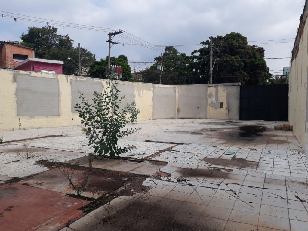 terreno para alugar, 312 m² por r$ 1.500/mês - mutinga - osasco/sp - te0301