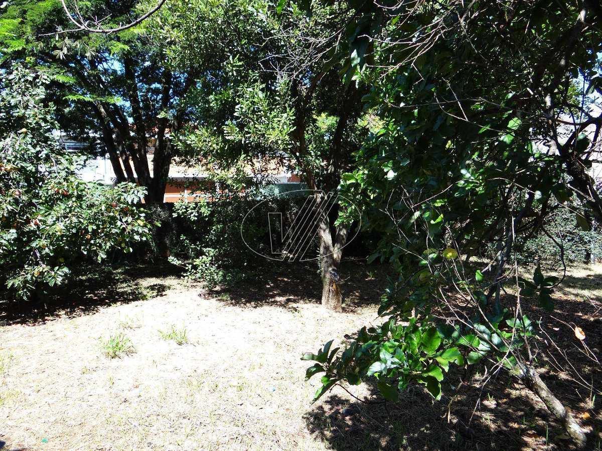 terreno para aluguel em nova campinas - te224838