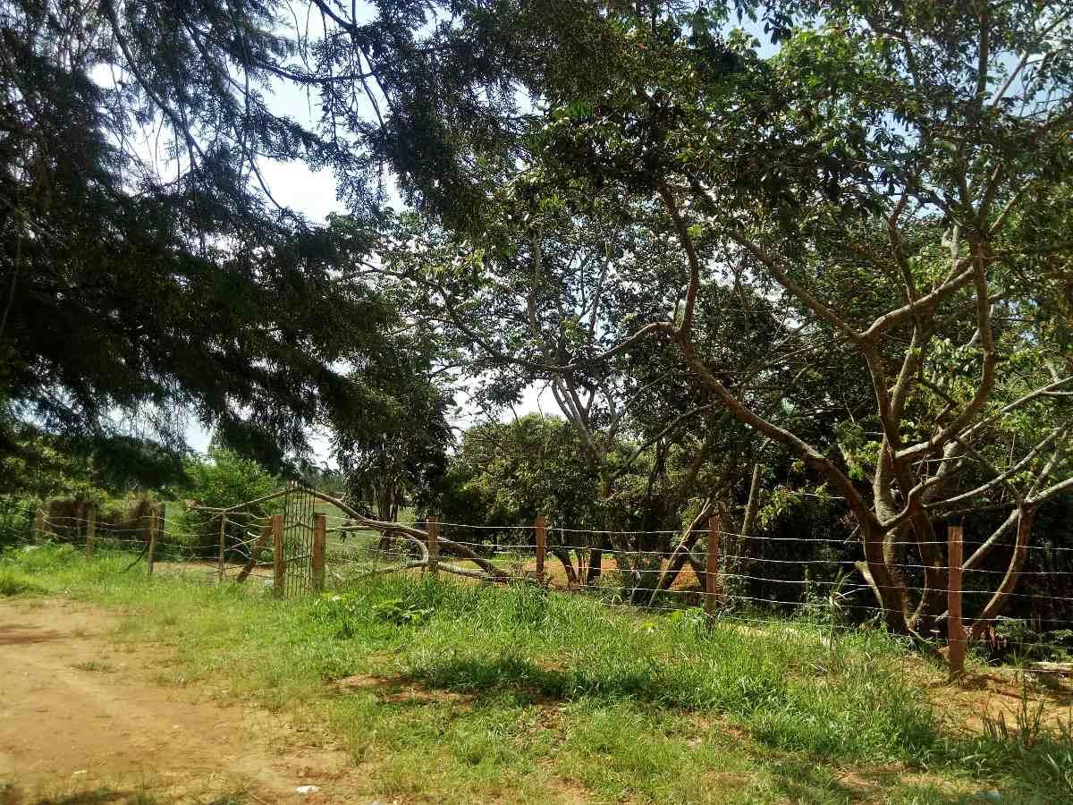 terreno para chácara 1250m2, bragança- local lindo e natural