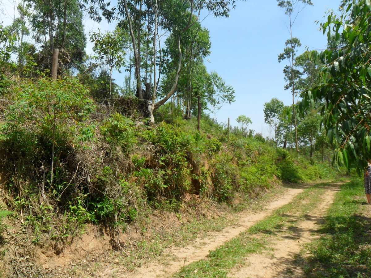 terreno para chácara 2.340 mts clube dos oficiais - suzano