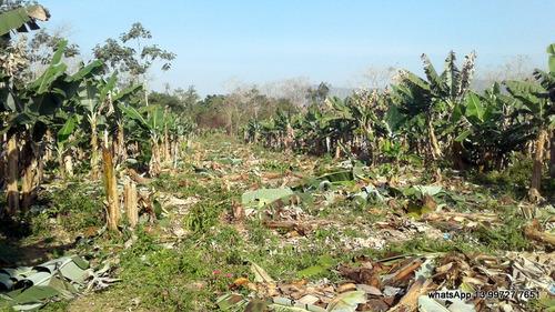 terreno para chácara a venda no litoral sul de sp (peruíbe)