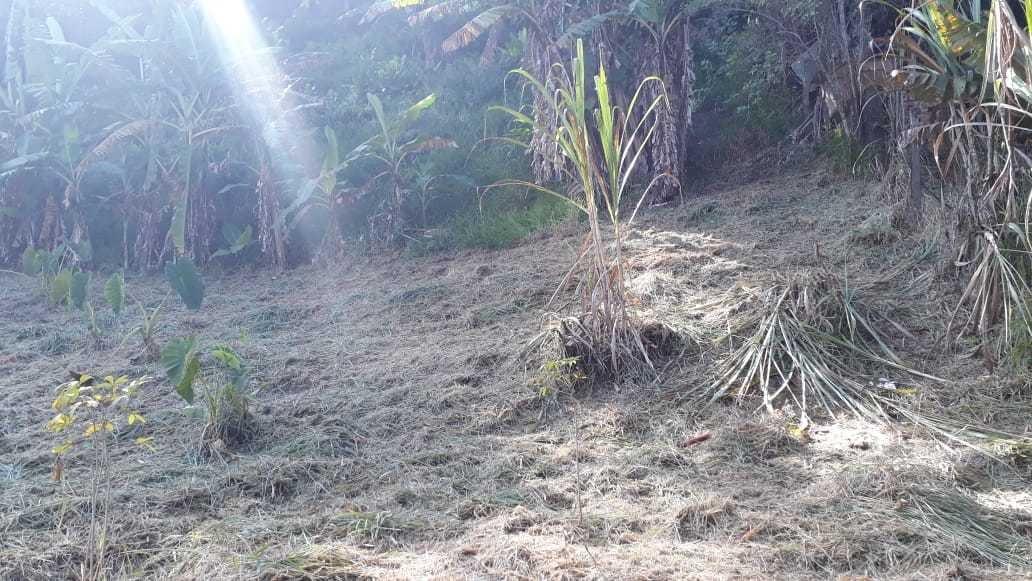 terreno para chácara em mairiporã