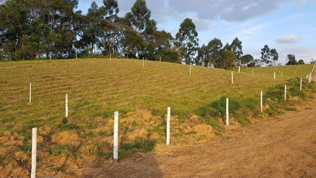 terreno para construção de chácaras (36)