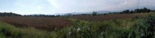 terreno para desarrollo en yautepec