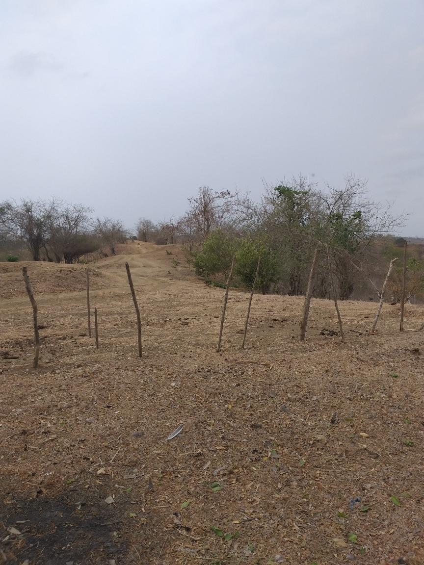 terreno para ganaderia
