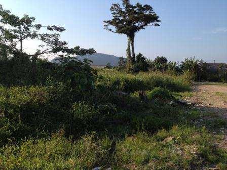terreno para investidores em mongaguá - cod: 22 - v22