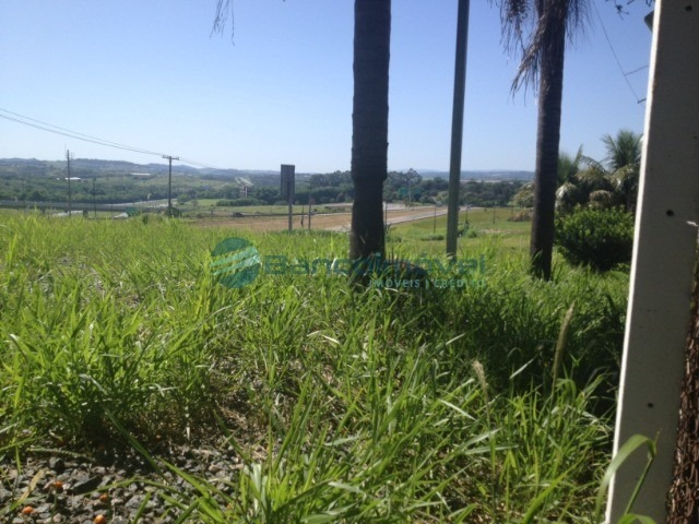 terreno para locação em campinas - te00451 - 34823446
