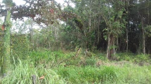 terreno para montar chácara em itanhaém sp 3308 e