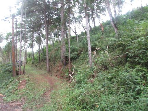terreno para moradia, 300 mts asfalto, referencia: 04578
