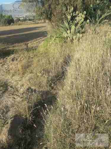 terreno para riego, cerca de pachuquilla, hidalgo