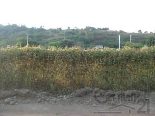 terreno para uso comercial ubicado a un costado del libramiento carretero salida a mazatla