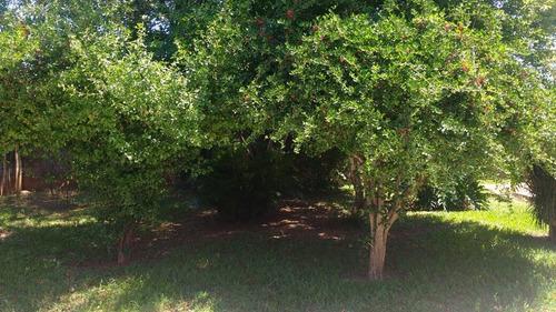 terreno para venda, 0.0 m2, jardim são bento - hortolândia - 265
