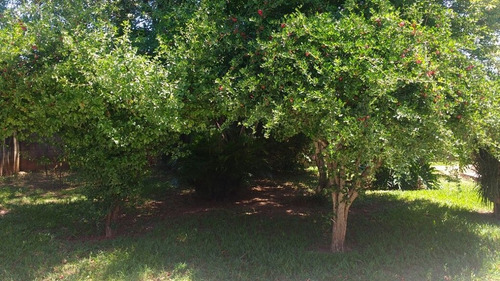 terreno para venda, 250.0 m2, jardim são bento - hortolândia - 265