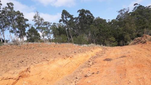 terreno para venda em cajamar - 17621