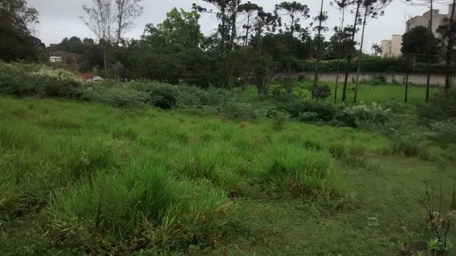 terreno para venda em ferraz de vasconcelos, (zona oeste) - 2000/2133_1-1031781