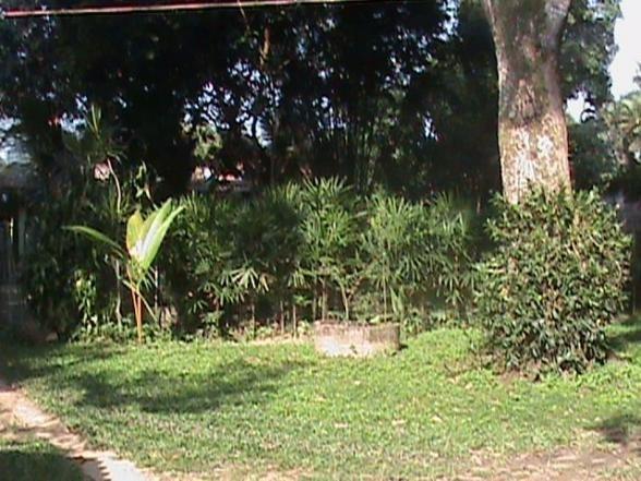 terreno para venda em rio de janeiro, vargem grande - t16372_2-428064