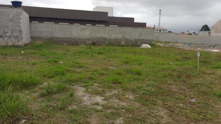 terreno para venda em são josé dos pinhais, guatupe - _2-884502