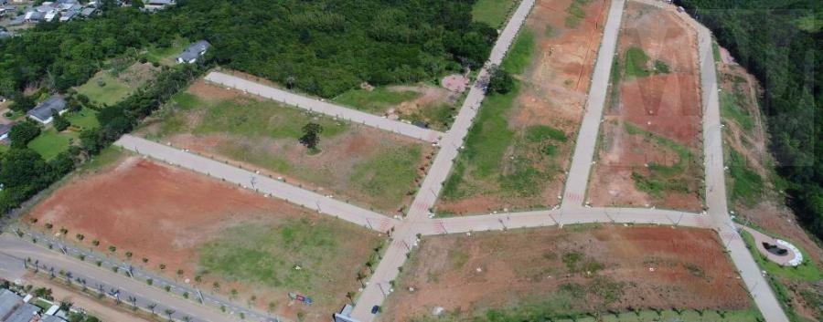 terreno para venda em viamão, centro - jvt046_2-763603