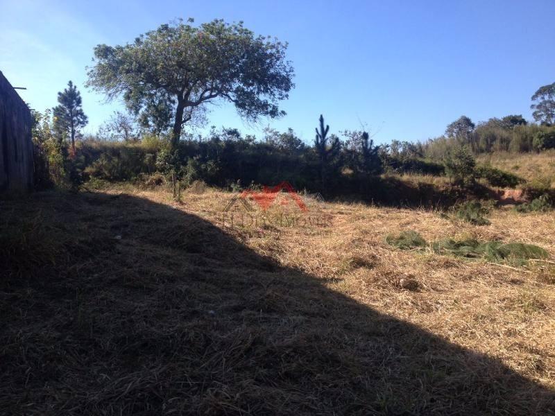terreno para venda no bairro vila peretá - 49