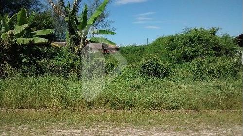 terreno - paraiso (distrito) - ref: 184599 - v-184599