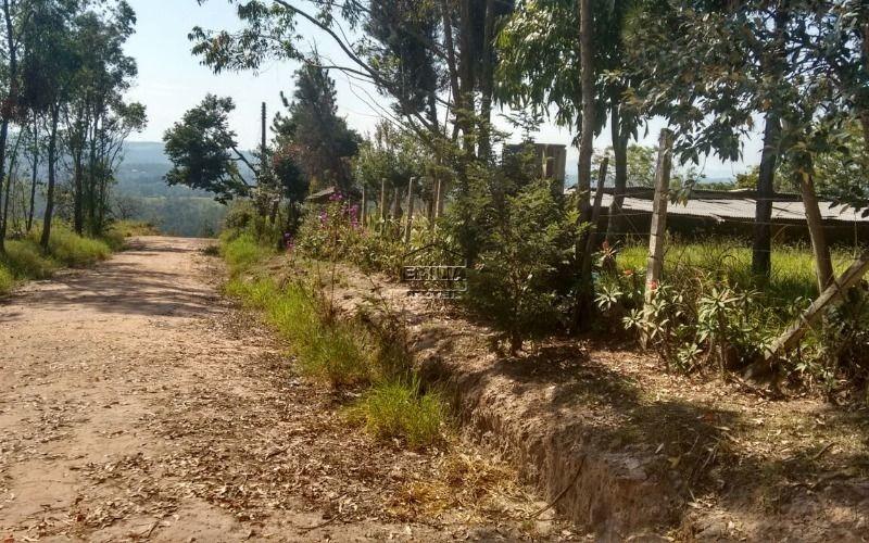 terreno, pau arcado- campo limpo paulista/sp