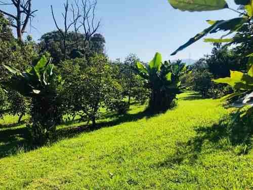 terreno pipioltepec