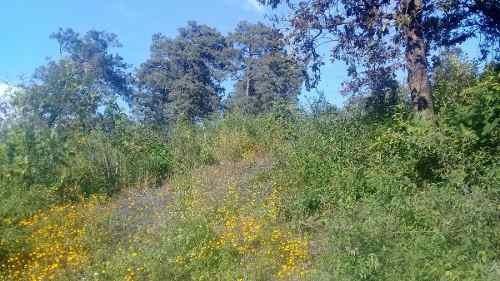 terreno pipioltepec con vista