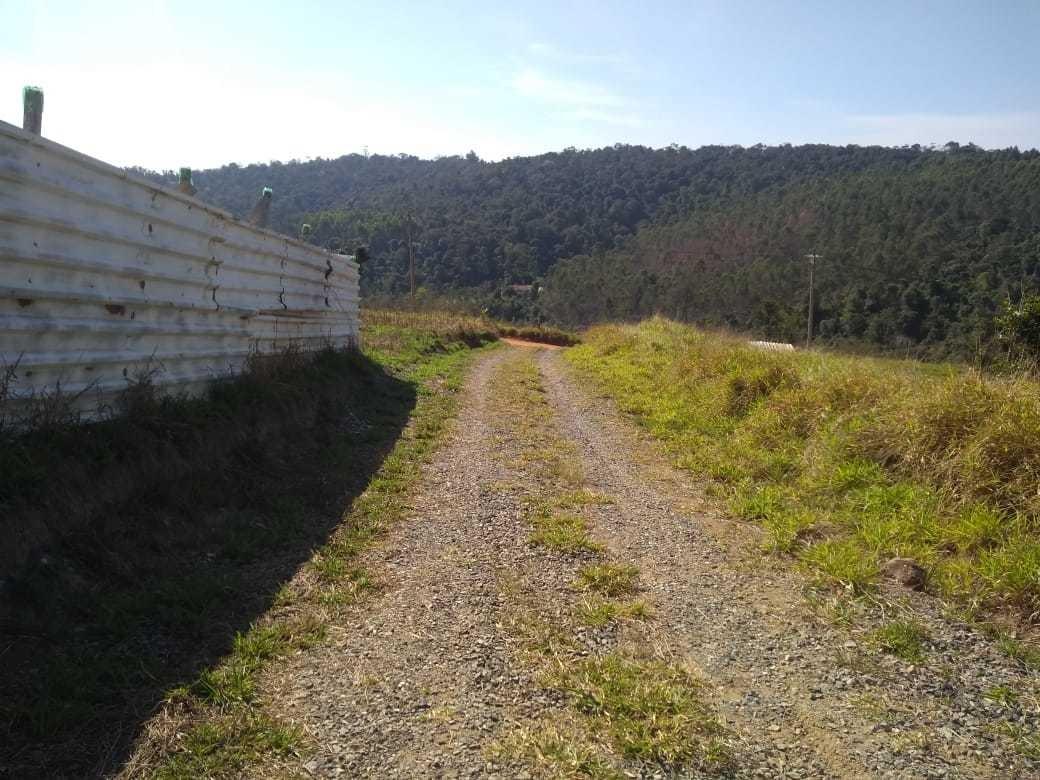 terreno plaino, direto com o proprietário. 1000m2