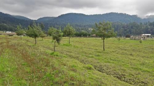 terreno plano en los saúcos