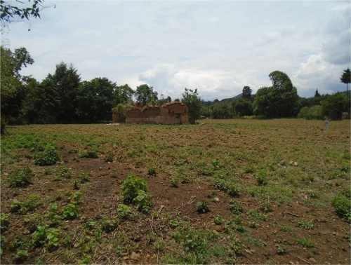 terreno plano ideal para  rancho o casa habitación.
