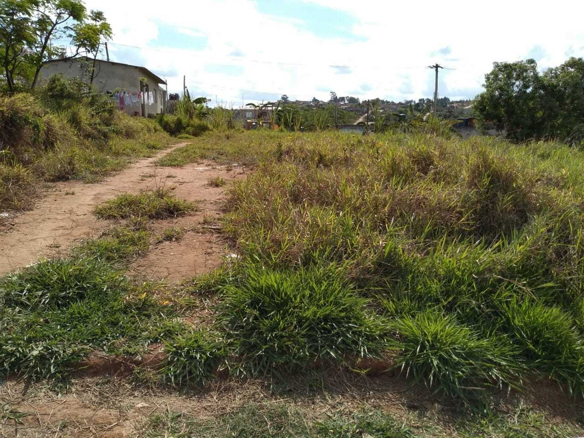 terreno plano no asfalto bairro primavera jarinu - cod.257