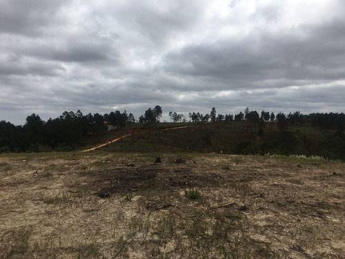 terreno planos a partir de 1.000 m² mtb