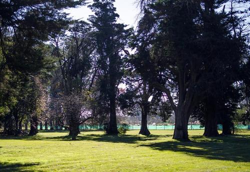terreno - prados del oeste