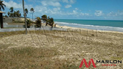 terreno praia de muriú