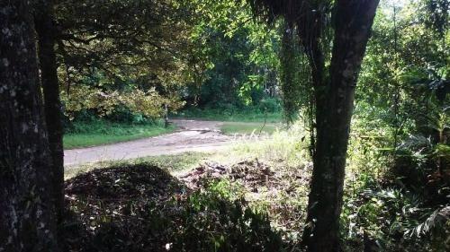 terreno próximo do asfalto, em itanhaém-sp