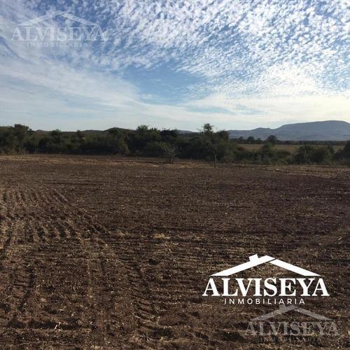 terreno - pueblo alcoyonqui