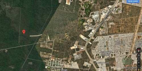 terreno regular 5000 m2 $400m2 ejido caucel