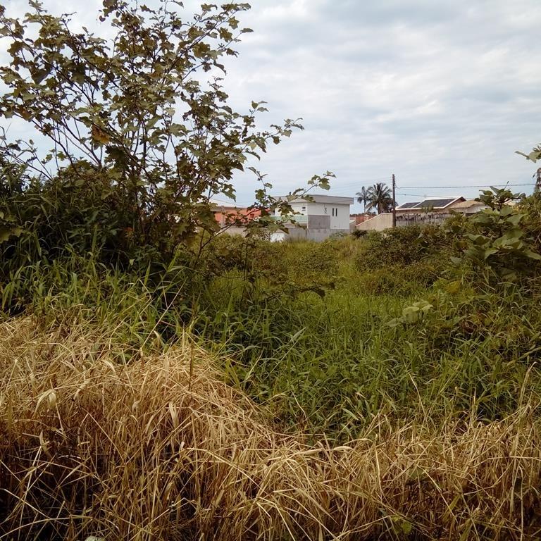 terreno residencial a venda em peruibe