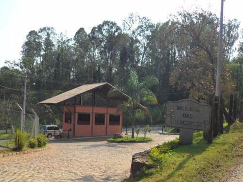 terreno residencial em campinas - sp, joaquim egidio - te00440