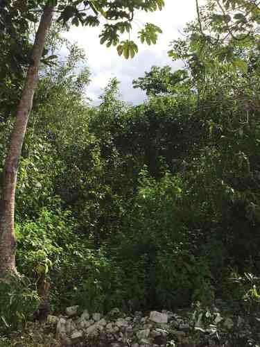 terreno residencial listo para construir en cancún c1893