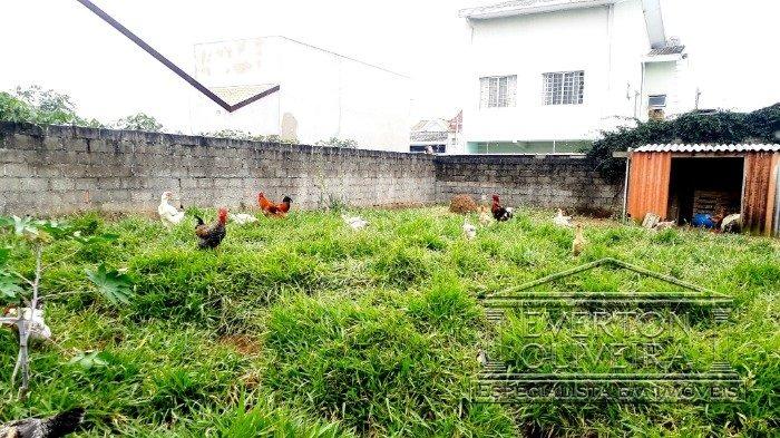 terreno - residencial santa paula - ref: 8853 - v-8853