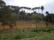 terreno  residencial à venda, condomínio reserva do itamaracá, valinhos. - codigo: te0341 - te0341