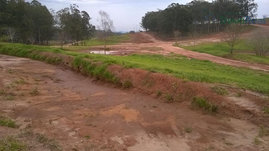 terreno residencial à venda, condomínio riviera santa cristina xiii, paranapanema. - te0236