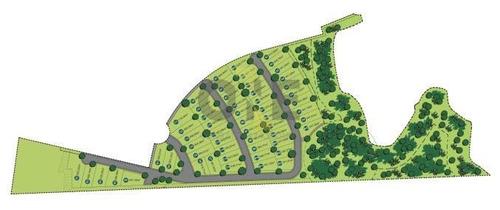terreno residencial à venda, granja viana. - te0275
