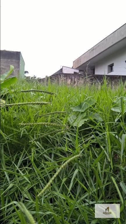 terreno residencial à venda, jardim guedala, são paulo. - te0006