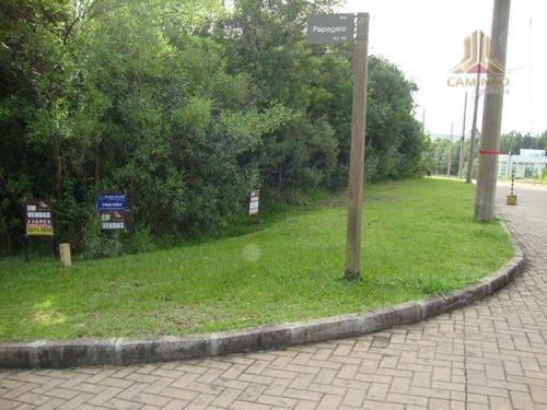 terreno residencial à venda, jardim krahe, viamão. - te0094