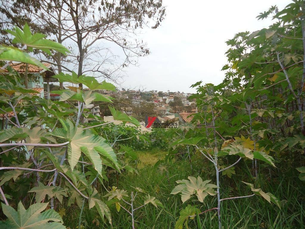 terreno  residencial à venda, jardim maristela, atibaia. - te0325